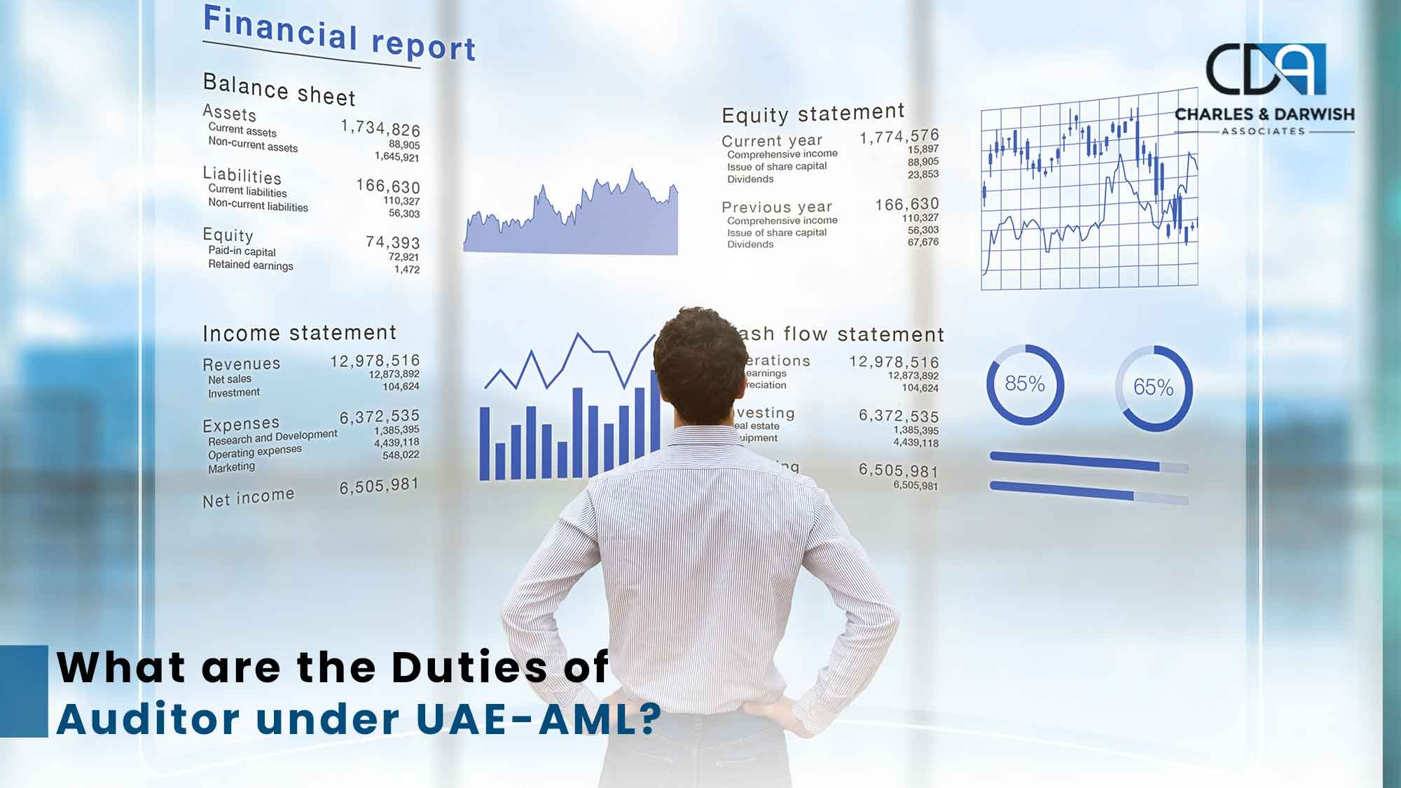 What Are The Duties of An Auditor Under UAE-AML?